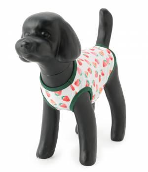 ROPÉ PICNIC PASSAGE - ロペピクニックパサージュ   【DOG】イチゴ柄ウェア